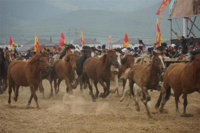 内蒙古最美的季节:乌兰毛都草原迎那达慕盛会