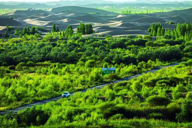 绿进沙退生态改善 库布其治沙值得借鉴的成功经验