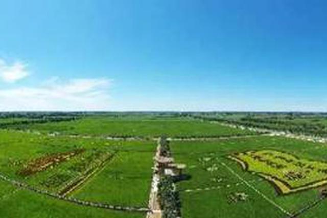 石泰峰:努力把兴安盟的水稻种出亮丽风景