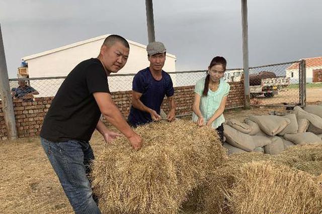 内蒙古自治区五千名党员中心户深扎牧区决战脱贫