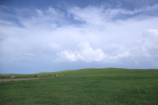 爱上内蒙古丨北疆亮丽风景线的绿色生态新图景