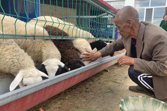 """呼和浩特农村发展""""小庭院""""经济:老有所养"""