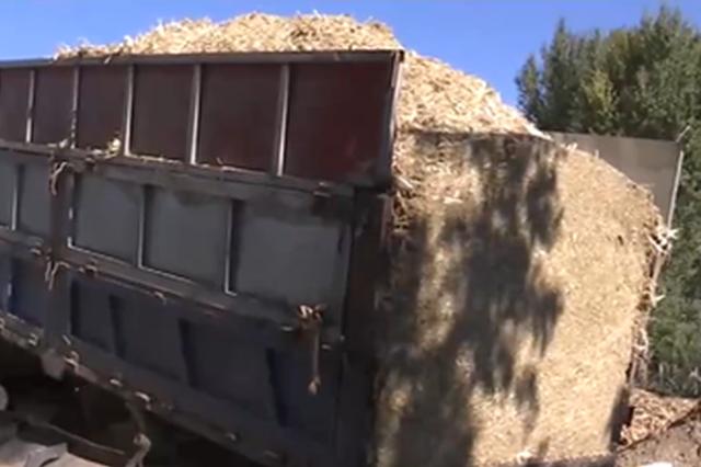 内蒙古:普及种养殖新技术 农户尝到甜头