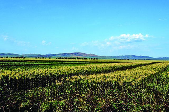 前三季度兴安盟农牧业农村牧区经济运行持续向好