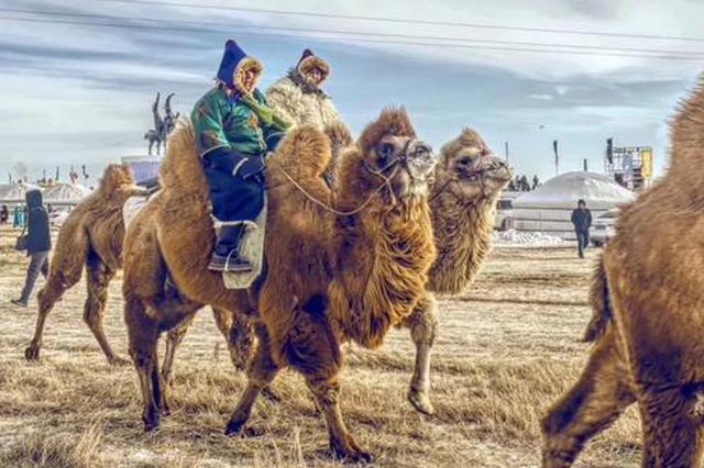 """内蒙古最后一批""""三少民族""""贫困人口""""摘帽"""""""