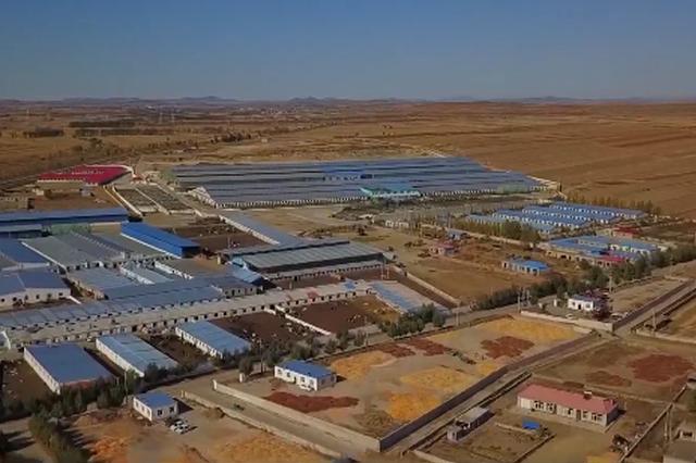 兴安盟:推动奶源基地建设 实现奶牛产业快速发展