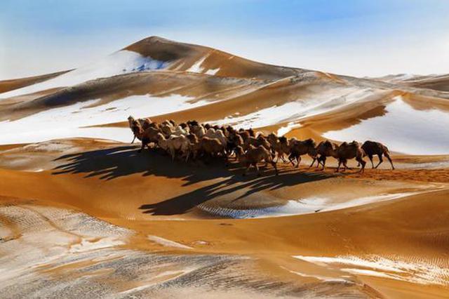 爱上内蒙古 丨 阿拉善冬之韵——暖阳沙漠 冰雪芳华