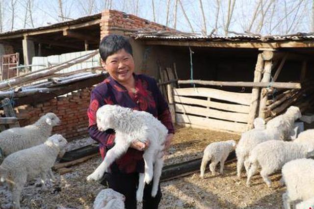 通辽市:好政策让农民心里有了底、兜里有了钱