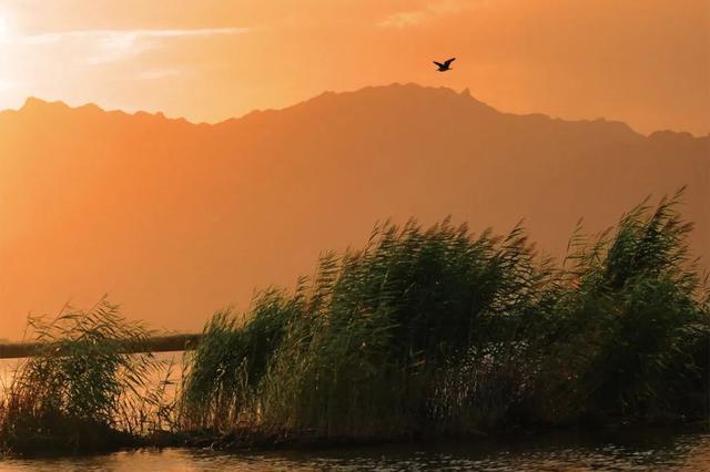 爱上内蒙古 | 一百个最美观景拍摄地——哈素海