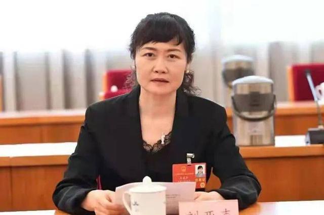 刘亚声代表:守护好人民群众生命安全和身体健康