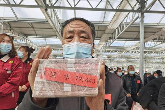 中國北方縣城鄉村振興記:馬鈴薯小鎮讓民眾找到致富新鑰匙