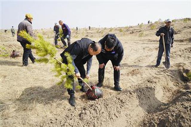 通遼市科左后旗10萬畝人工造林項目全面開工