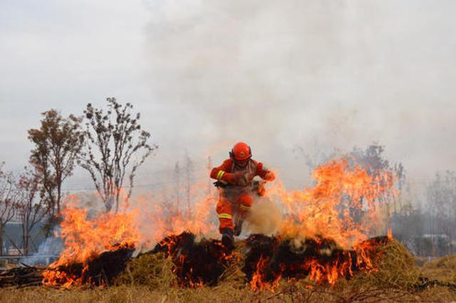 內蒙古森林消防總隊構建森林草原防滅新格局