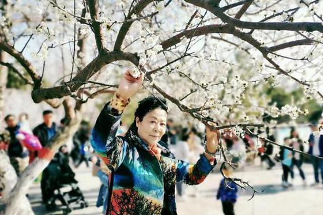 內蒙古清明假期客源集中周邊八省份 自駕熱度不減
