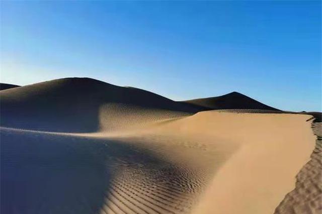爱上内蒙古 丨 沙漠、骆驼、胡杨的相遇,幻化作绝美诗句