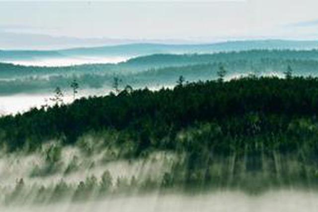 专家:2030年内蒙古大兴安岭碳汇总量将超保守计量1.6亿吨