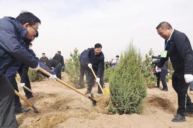 义务植树,为乌海大地添新绿!