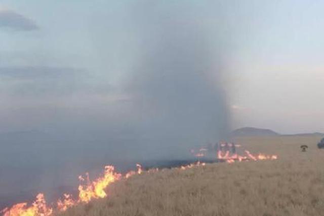 内蒙古成功堵截蒙古国草原大火