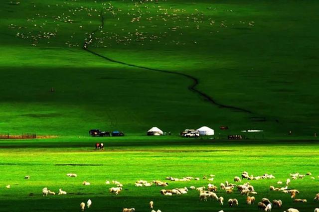 爱上内蒙古 丨 呼伦贝尔,不止草原