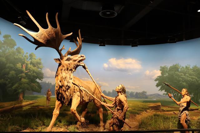 走進內蒙古自然博物館探索奧秘