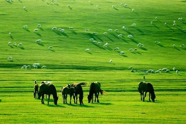 內蒙古自治區進一步強化景區水上安全工作