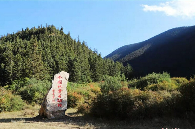 內蒙古賀蘭山自然保護區:祖國邊陲的一道綠色屏障
