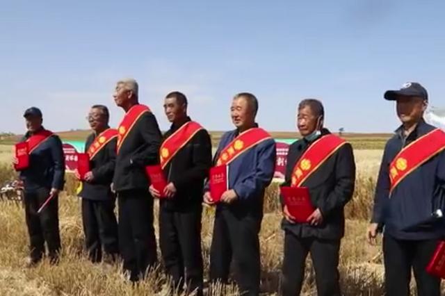 呼和浩特市武川县:金秋九月庆丰收 硕果累累麦薯香