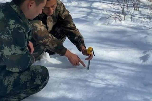汗马国家级自然保护区深秋降大雪 雪深达30厘米