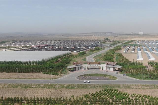 内蒙古自治区乌海市:产业兴旺带动了乡村振兴