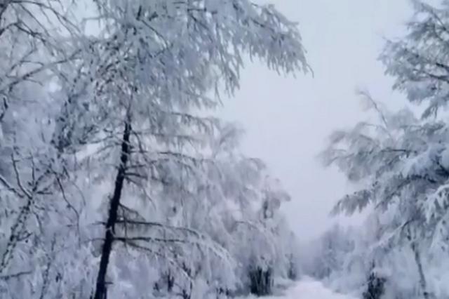 """在""""中国冷极""""来一场冰雪世界童话之旅吧"""