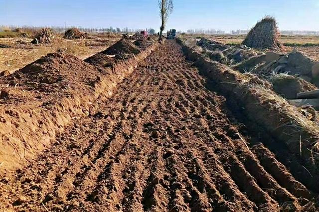 巴彦淖尔市75.6万亩高标准农田建设项目开工
