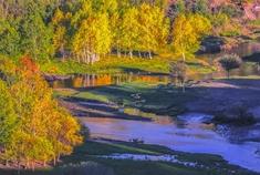 乌兰布统:层林尽染叠翠流金