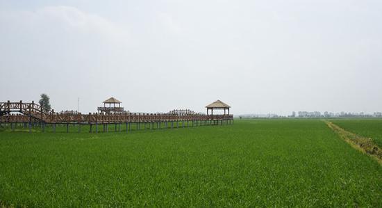 以族为主体,朝、汉、蒙、满多民族聚居的三合村。