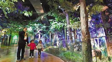 内蒙古自然博物馆开馆了