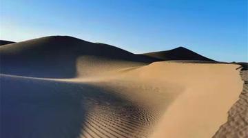 沙漠、駱駝、胡楊的相遇幻化作絕美詩句