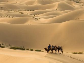 巴彦淖尔的沙漠之美