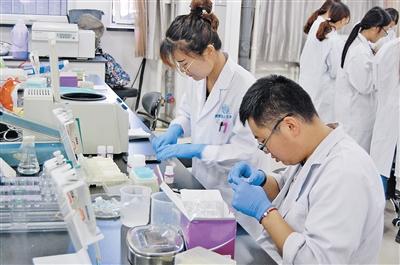内蒙古大学生命科学学院基因工程实验室里,学生正在做实验。 本报记者 苏永生 摄
