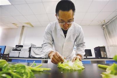 将农药残留洗脱剂滴在刚刚采样回来的蔬菜上