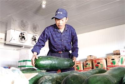 蔬菜市场里配货。