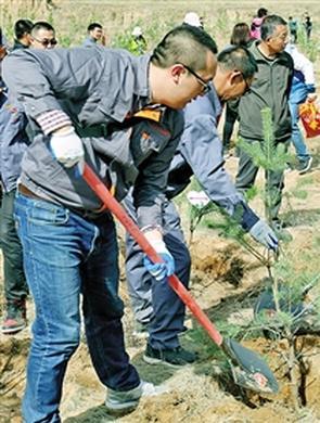 首府赛罕区全民义务植树绿化城区