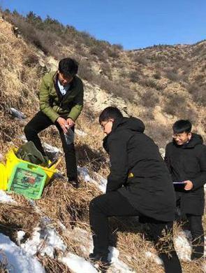 【新春走基层】大山里的覆绿人