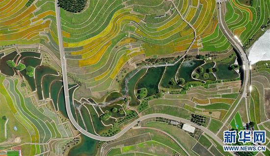 8月10日拍摄的乌兰浩特市天骄天骏生态旅游度假区(无人机照片)。 新华社记者 安路蒙 摄