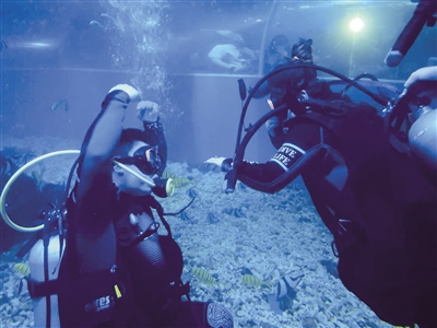 5月20日,在鄂尔多斯海洋馆上演了浪漫的一幕:一个男子潜水求婚成功,为女朋友戴上了婚戒(如图)。