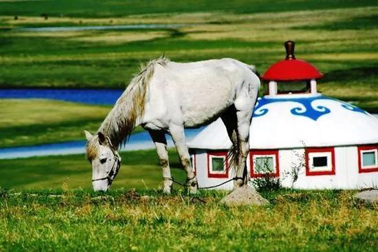 鄂温克草原永远都是伊敏河畔的碧绿枫叶,