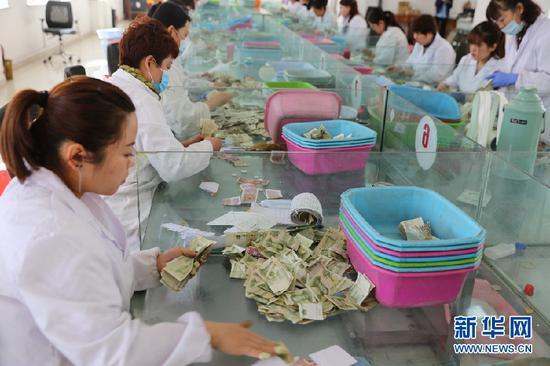 呼和浩特市公共交通总公司点钞中心职工正在点钞。