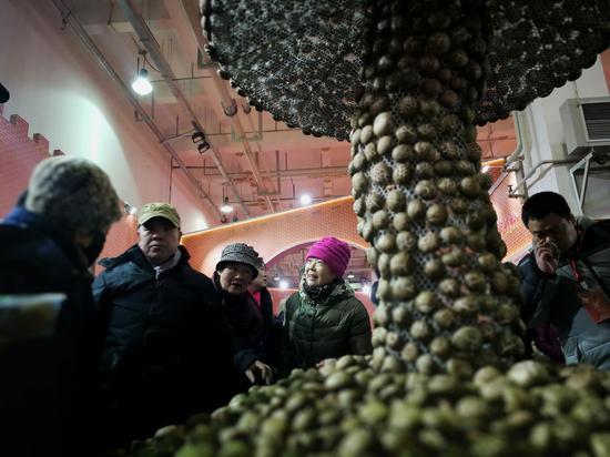极具创意的清水河山峡花菇展示。