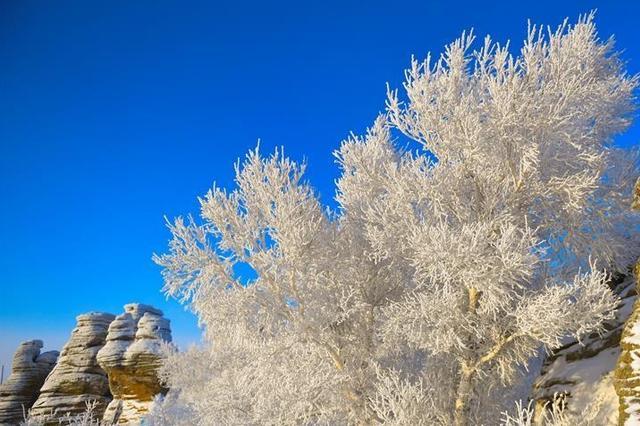 积雪覆盖七成 未来3天全区多大风降雪降温天气