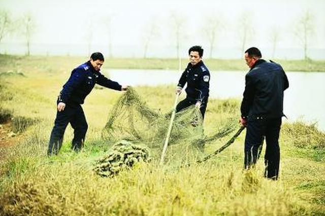 赛罕区保护候鸟专项行动全面启动