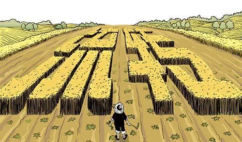 """土地流转让农民实现""""双收入"""""""