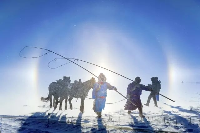 览北疆壮美盛景,享雪原别样风情